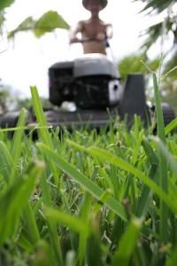 Græsslåmaskiner